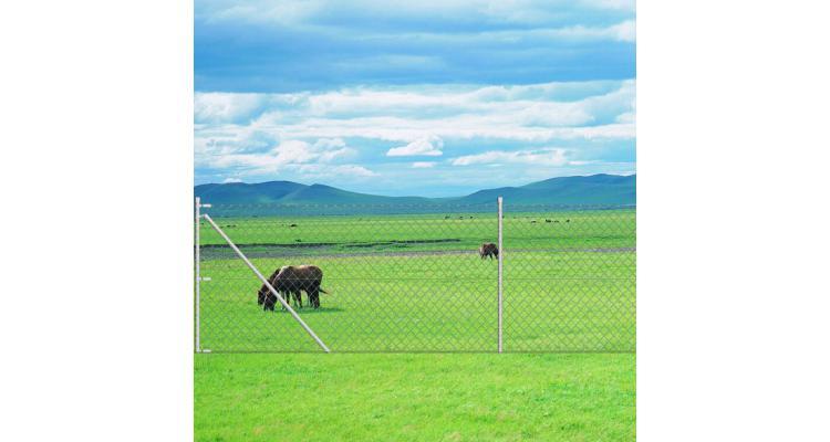 Gard din plasă galvanizată, cu țăruș de ancorare stâlp, 25 x 0,8 m imagine 2021 kivi.ro