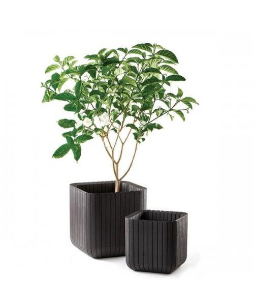 Ghiveci Cube Planter M Antracit poza kivi.ro