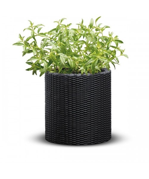 Ghiveci M CYLINDER PLANTER imagine 2021 kivi.ro
