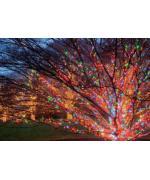 Instalatie de Craciun, tip liniara, 20 m cu 200 leduri hexagonale, multicolor/ RGB