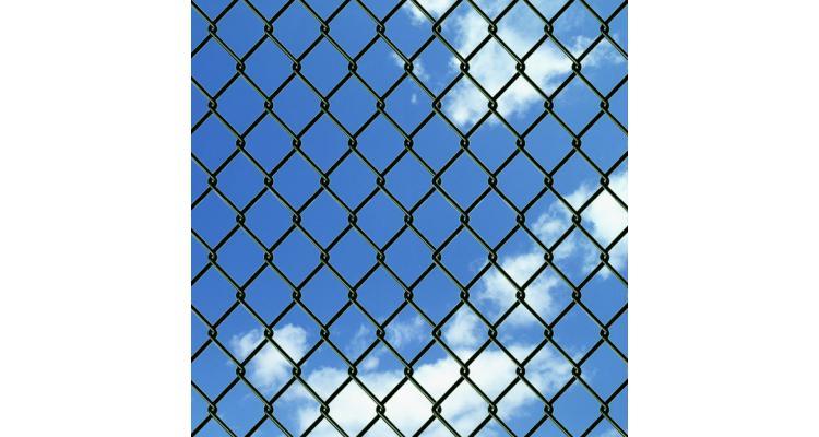 Gard plasa de sarma cu tarusi de fixare, verde, 1,97x25 m
