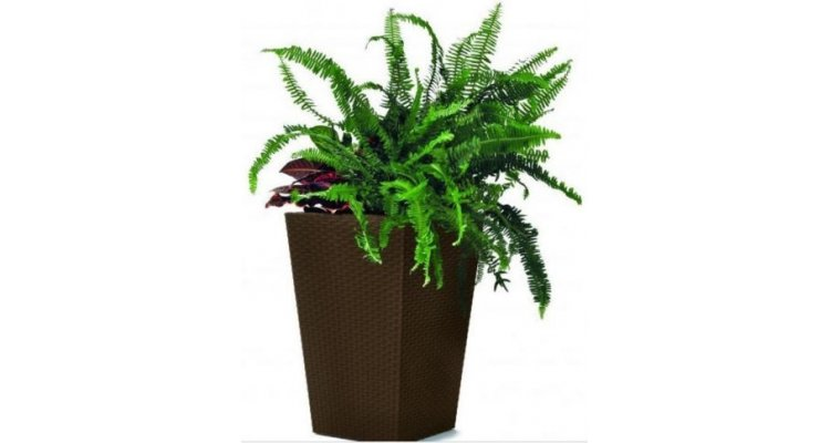Ghiveci Small Rattan Planter 23.6l
